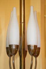Graceful Floor Lamp By Angelo Lelli For Arredoluce For Sale At 1stdibs