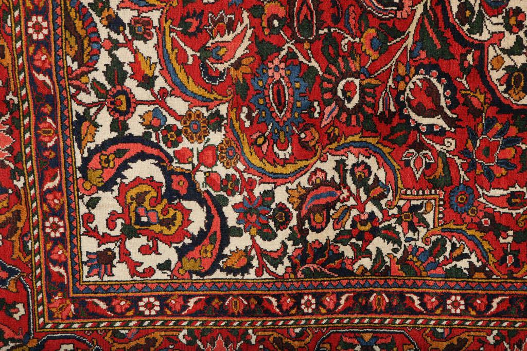20th Century Persian Bakhtiari Carpet in Handspun Wool and Vegetable Dyes, circa 1920 For Sale