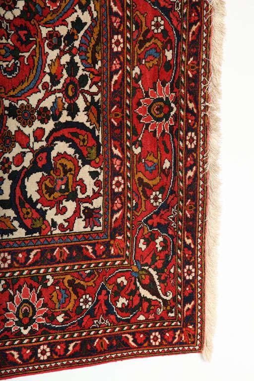 Persian Bakhtiari Carpet in Handspun Wool and Vegetable Dyes, circa 1920 For Sale 2