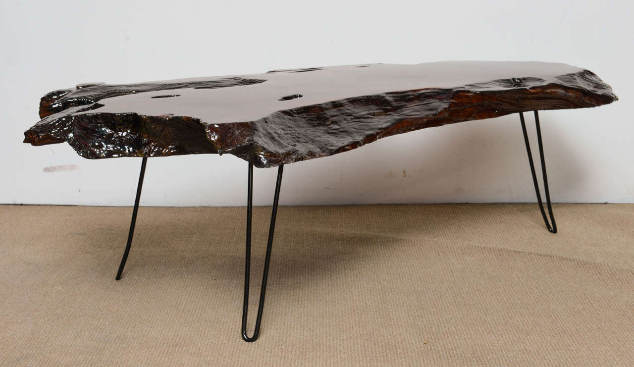 Beautiful vintage cross cut of a tree trunk as a coffee table creates a beautiful organic