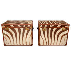 Large Pair of Matching Zebra Skin Trunks