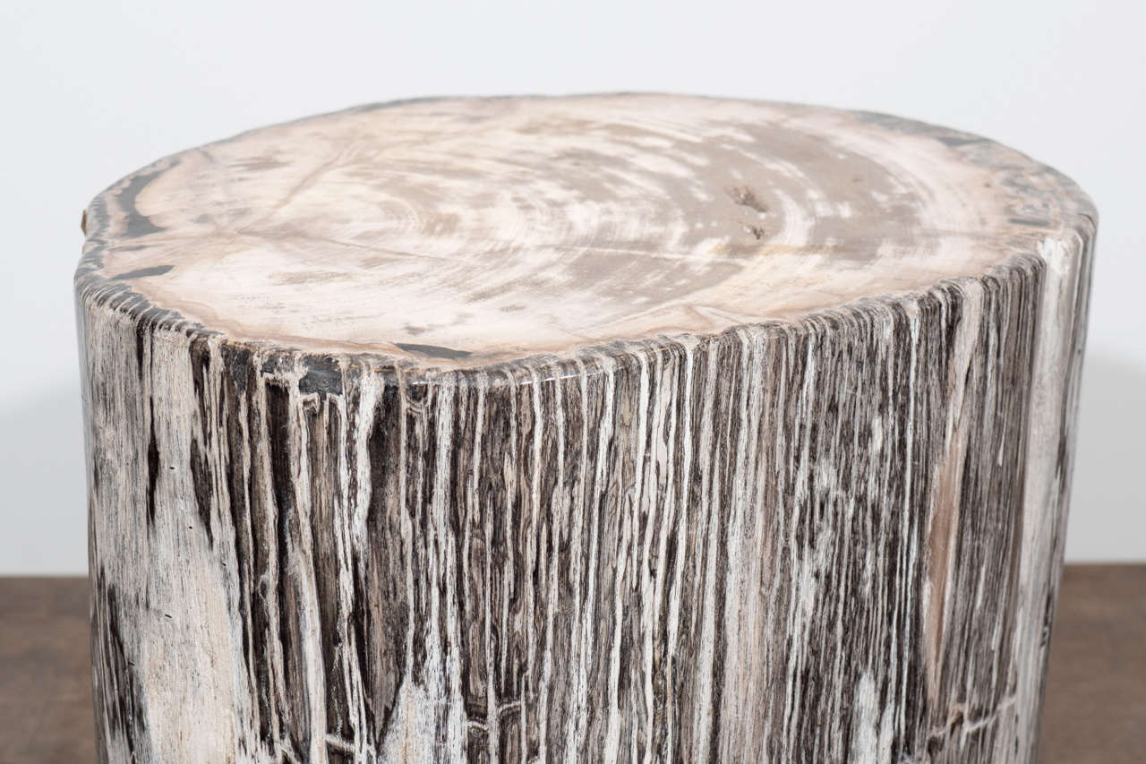 18th Century and Earlier Petrified Wood Side Table For Sale