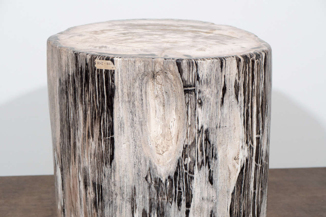 Petrified Wood Side Table For Sale 2