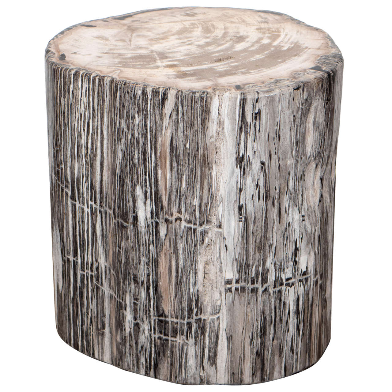 Petrified Wood Side Table For Sale