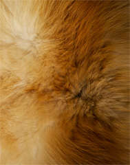 Hermes Orylag Fur Throw image 7