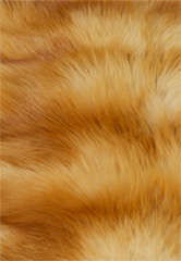 Hermes Orylag Fur Throw image 8