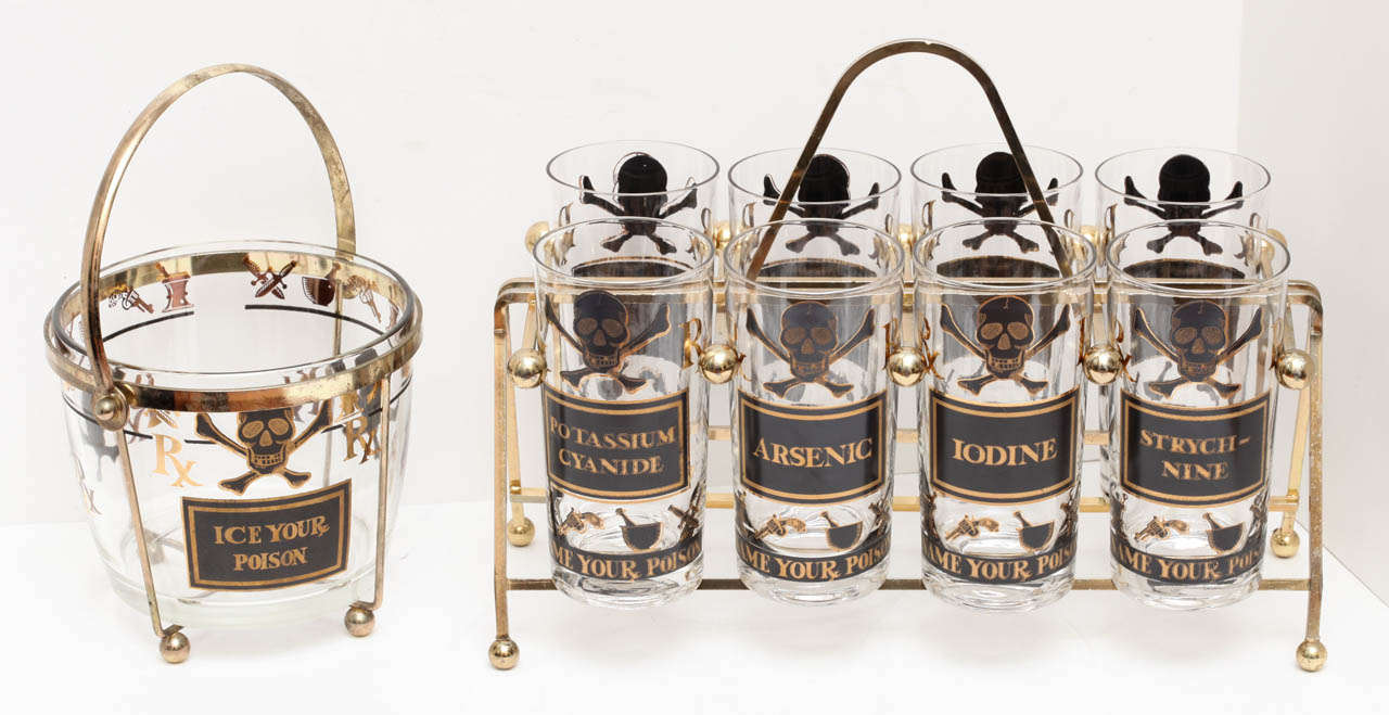 Georges Briard Quot Name Your Poison Quot Highball Set And Ice