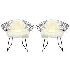 Pair of Harry Bertoia Diamond Chairs