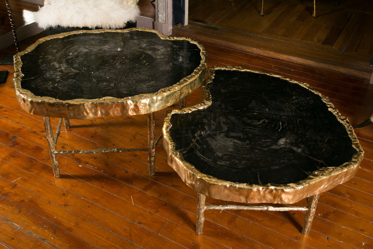 Fabulous Pair Of Petrified Wood Coffee Tables At 1stdibs