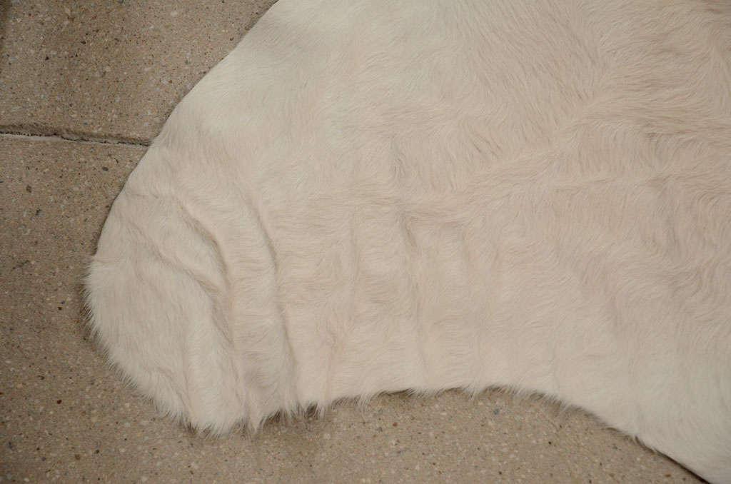 Rare All Natural White Cowhide Rug At 1stdibs