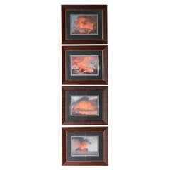 Rare collection of 19th Century Gouache Paintings of Mt. Vesuvius
