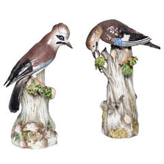 Fine Pair of Antique Meissen Porcelain Figures of Birds