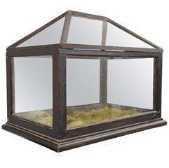 19th Century Terrarium