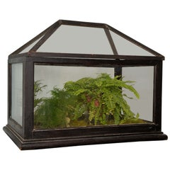 Victorian Mahogany and Glass Terrarium