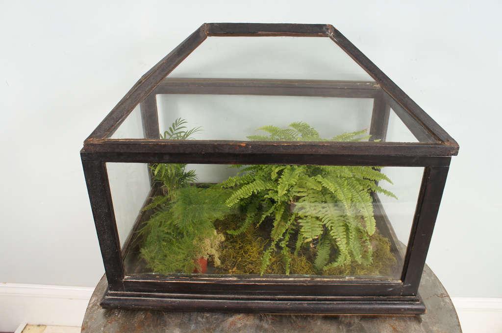 British Victorian Mahogany and Glass Terrarium For Sale