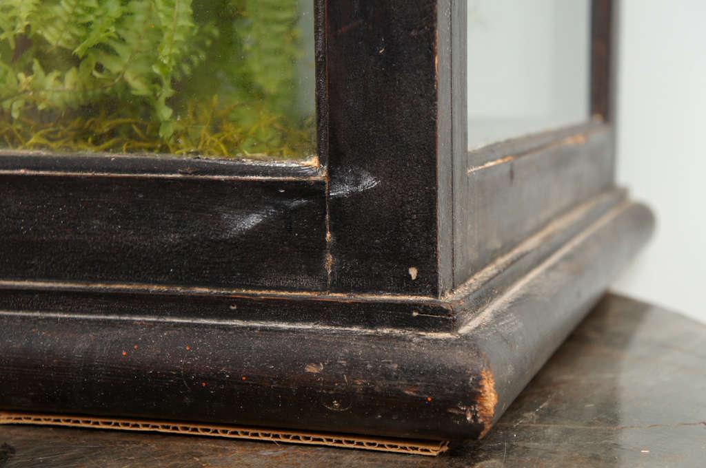 19th Century Victorian Mahogany and Glass Terrarium For Sale