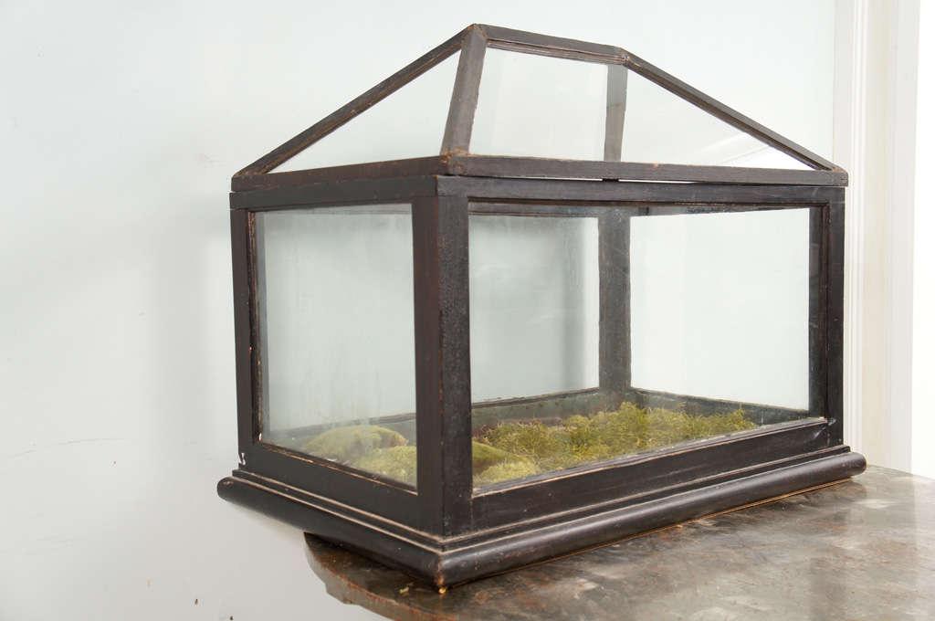 Victorian Mahogany and Glass Terrarium For Sale 2