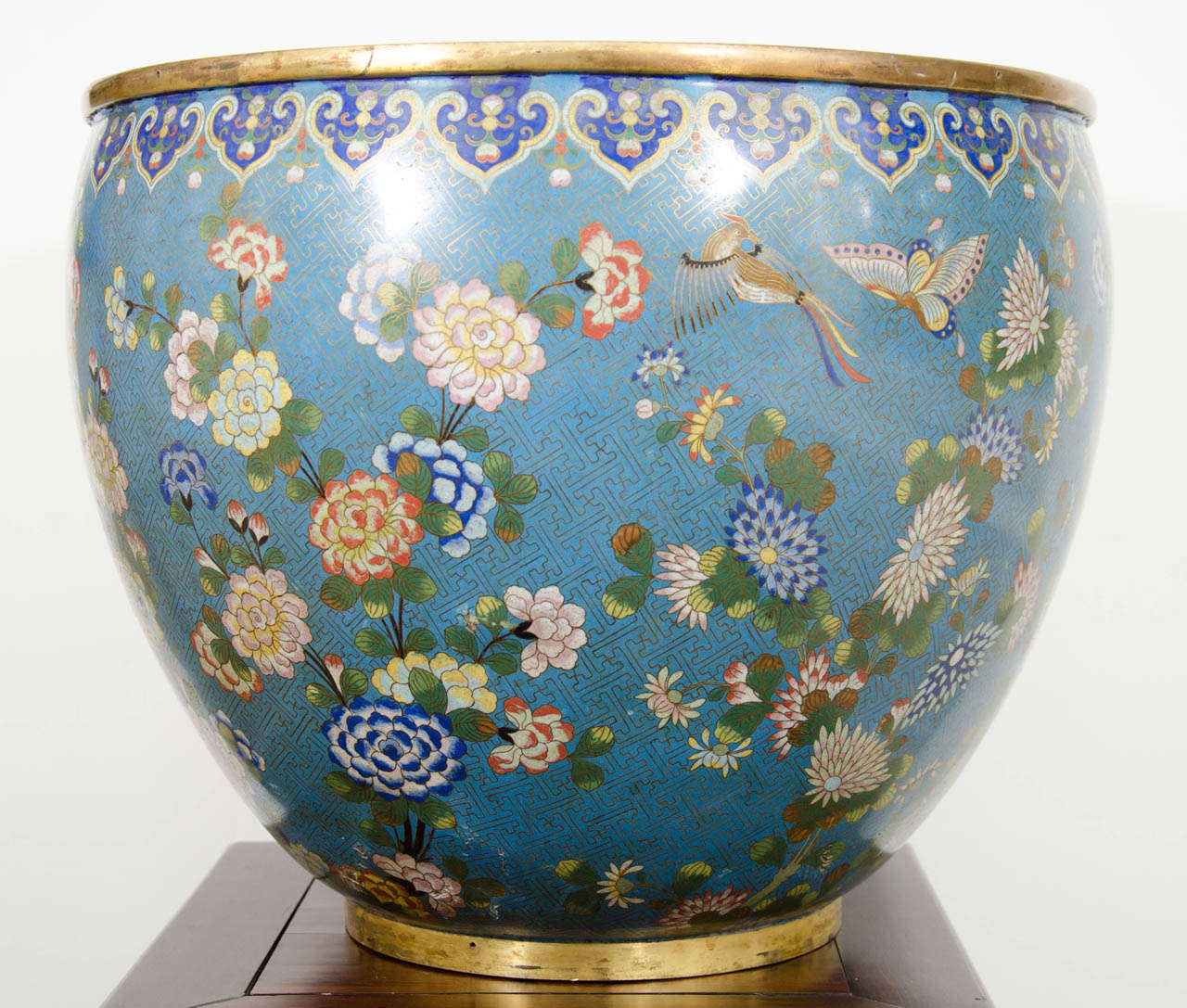 A Large 19th Century Daoguang Period Cloisonne Bowl Or Planter At 1stdibs