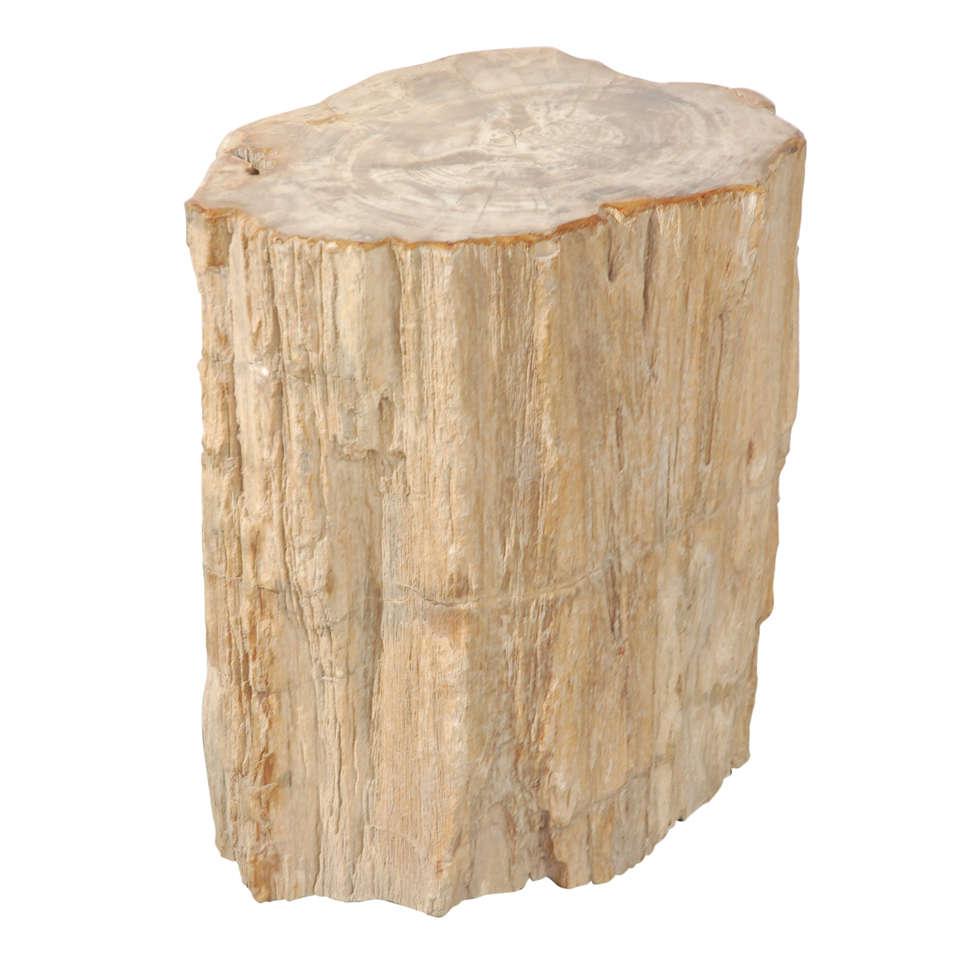 Petrified wood side table - Petrified Wood Table At 1stdibs