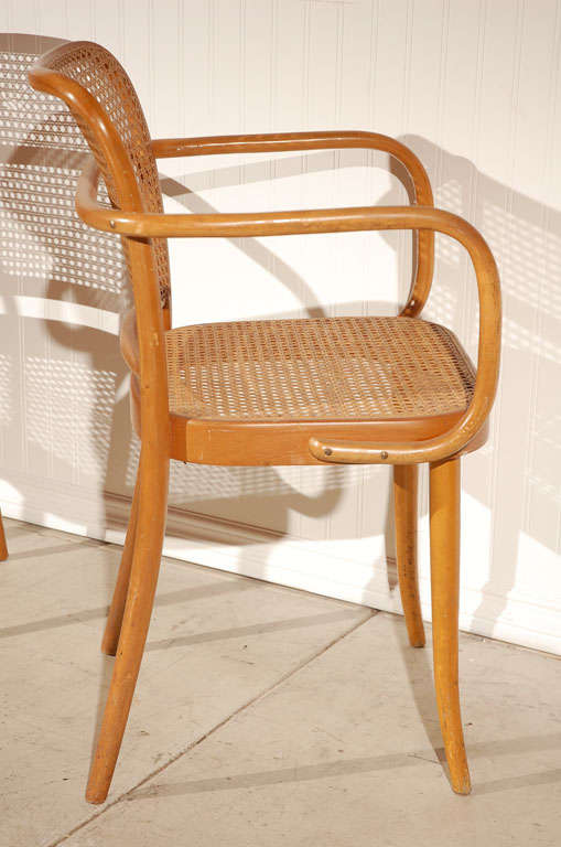 "Pr. of Stendig ""Prague"" bentwood armchairs chairs, Josef Hoffman image 7"
