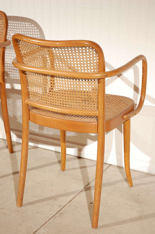 "Pr. of Stendig ""Prague"" bentwood armchairs chairs, Josef Hoffman image 8"