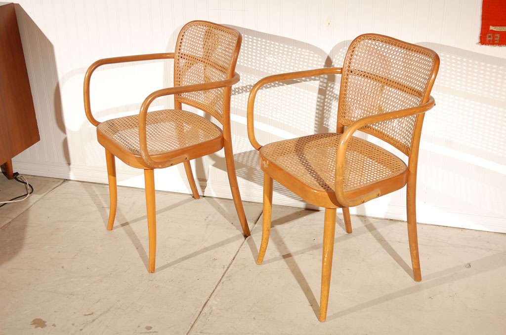 "Pr. of Stendig ""Prague"" bentwood armchairs chairs, Josef Hoffman image 2"