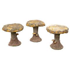 Children's Garden Mushrooms