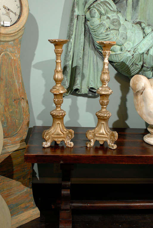 A pair of Italian late 18th, early 19th century gilded altarsticks. This pair of Italian good sized altarsticks features gilding on all sides. The central column is carved with delicate floral motifs and is raised on a tripod base. The top of these