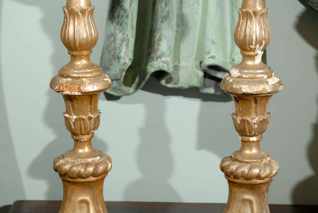 18th Century and Earlier Pair of Italian 18th Century Giltwood Altarsticks For Sale