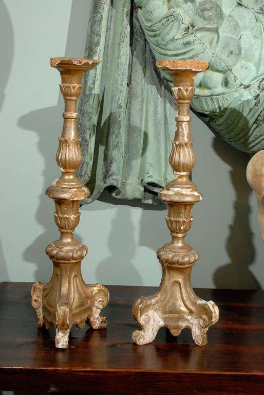 Pair of Italian 18th Century Giltwood Altarsticks For Sale 4