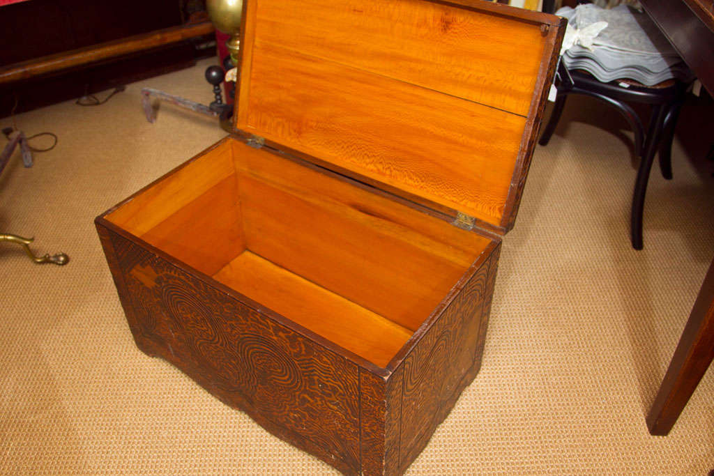 20th Century Unique Folk Art Pyrography Chest For Sale