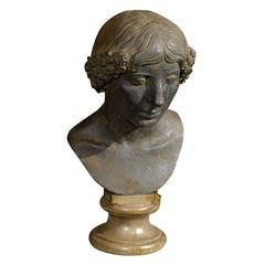18th Century Grand Tour Bronze Bust