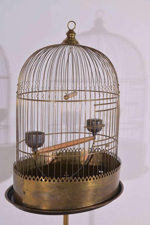 Victorian Brass Bird Cage image 3