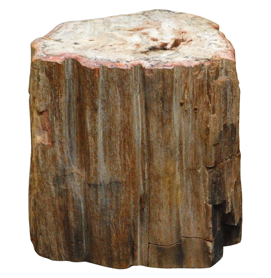 petrified wood table at 1stdibs