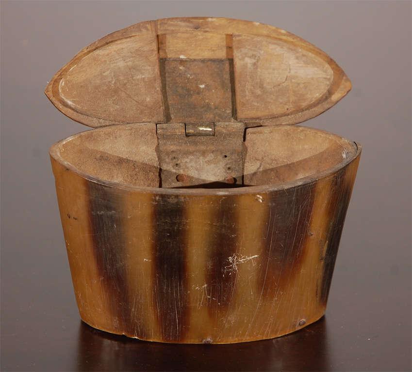 Horn Box 4