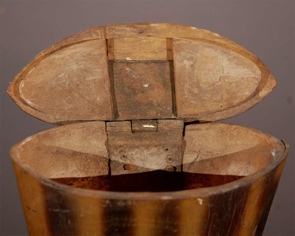 Horn Box 5