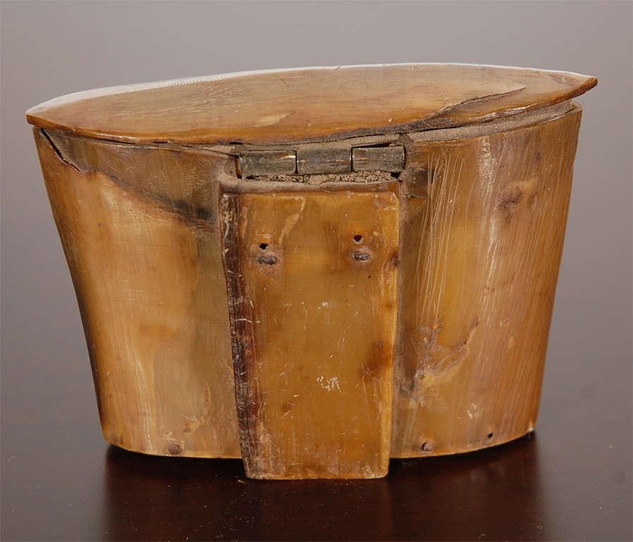 Horn Box 7