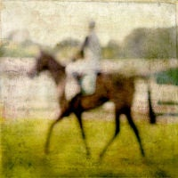 Race Horse Blur Single II, Sedgefield UK