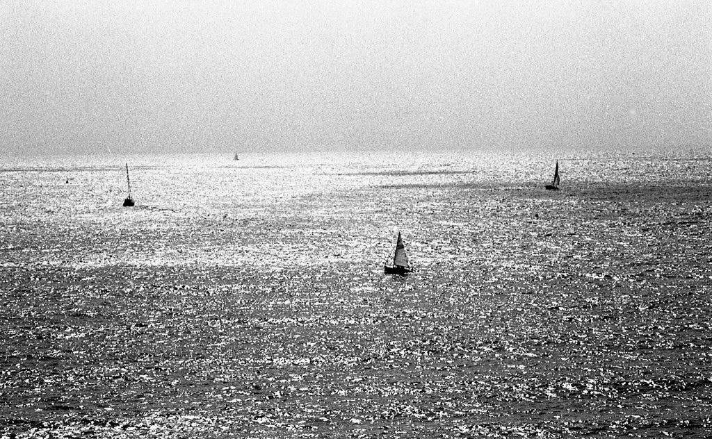 Sailboats in Dartmouth, facing the English Channel, Devon, UK