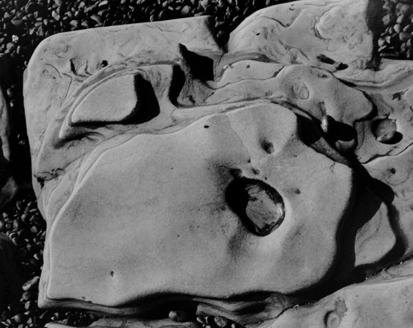 Edward Weston - Point Lobos 1930 1