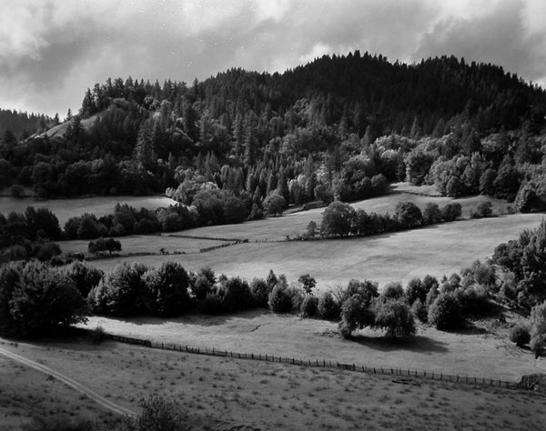 Edward Weston Black and White Photograph - Eel River Ranch, 1937
