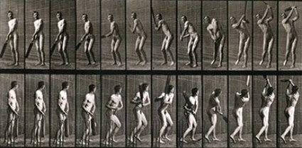 Eadweard Muybridge - Untitled (Man with Cricket Bat) 1