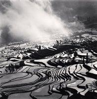 Yuanyang, Study 4, Yunnan, China, 2013