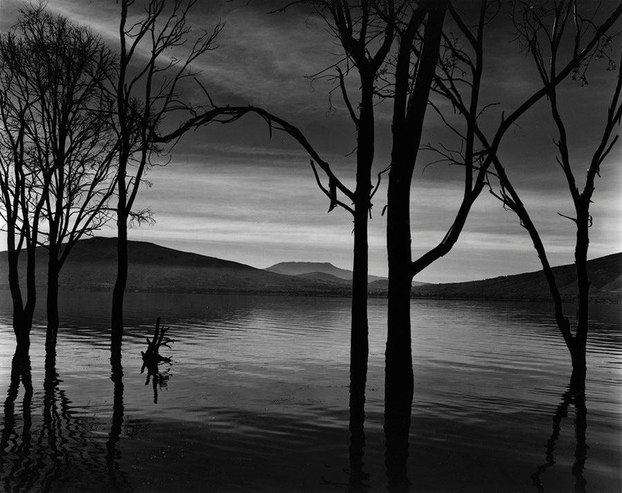 Brett Weston - Lake Patzcuaro, Mexico 1