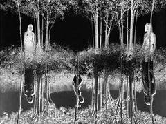 Small Woods Where I Met Myself  1967