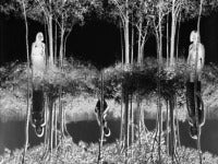 Jerry Uelsmann - Small Woods Where I Met Myself  1967