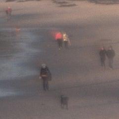 Dog Walking at Sunset