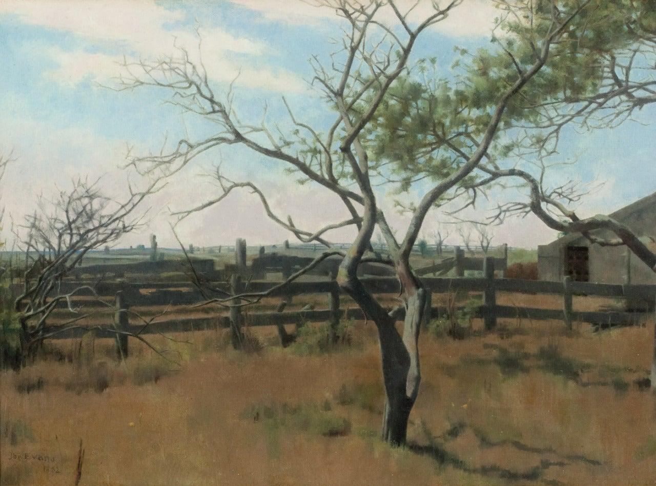 Rural Reverie