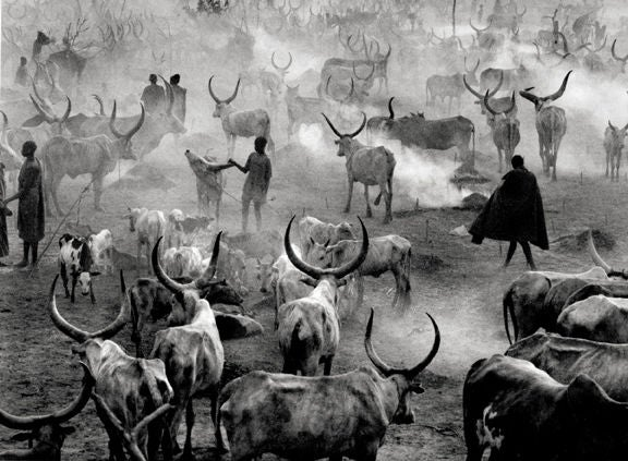 Dinka Cattle Camp, Southern Sudan