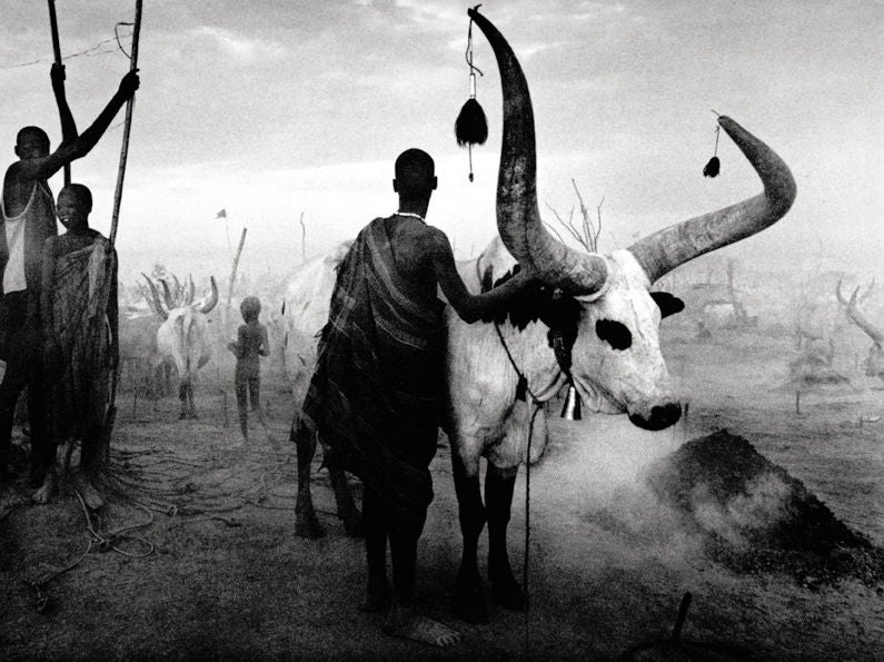 Sebastião Salgado - Dinka Group at Pagarau Cattle Camp, Southern Sudan 1